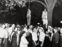 lynchin group